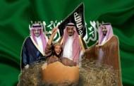 محلل و سياسي ألماني: السعودية هي الراعي والداعم الرئيسي للإرهاب في العالم!